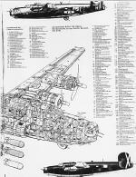 Cut out of Consolidated B-24 Liberator 4-Engine Heavvy Bomber WWII Front Half