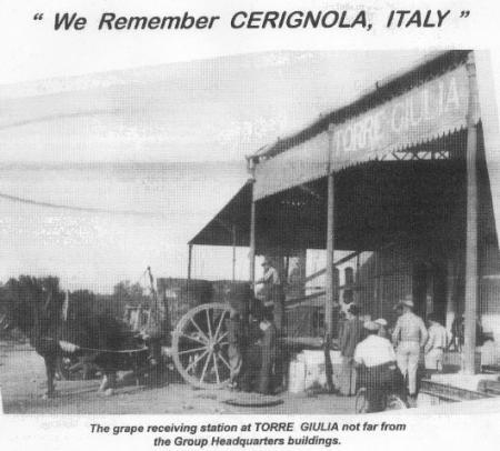 459th BG`s Giulia Field- Italian Grape Receiving Station Active in 1944 During War
